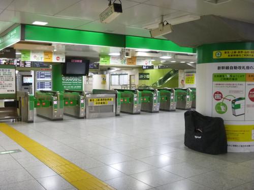 Akita001