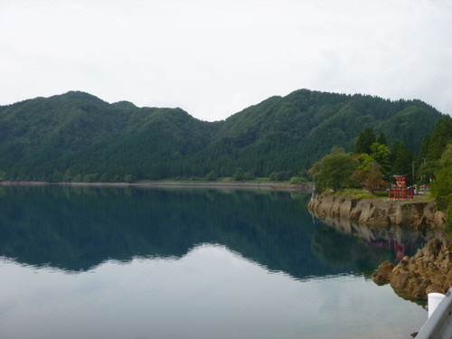 Akita005