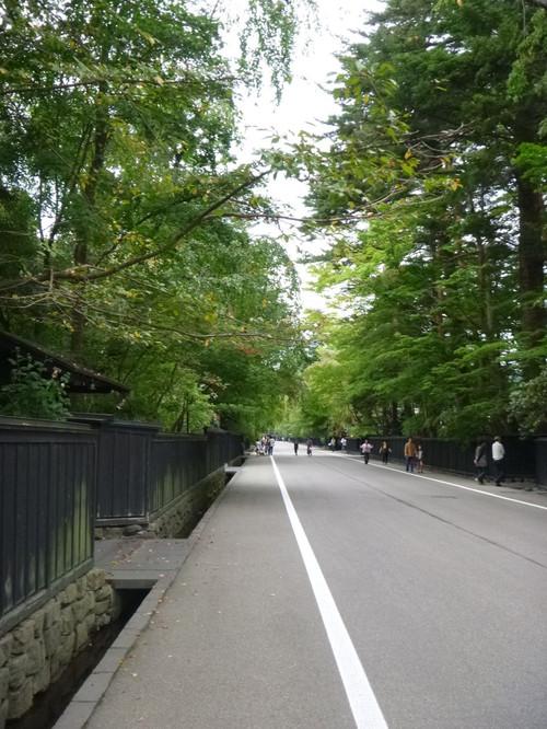 Akita014