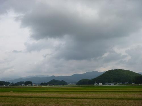 Akita021