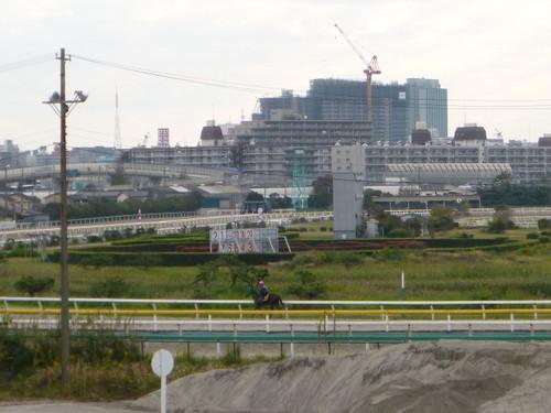 Tokyowan005