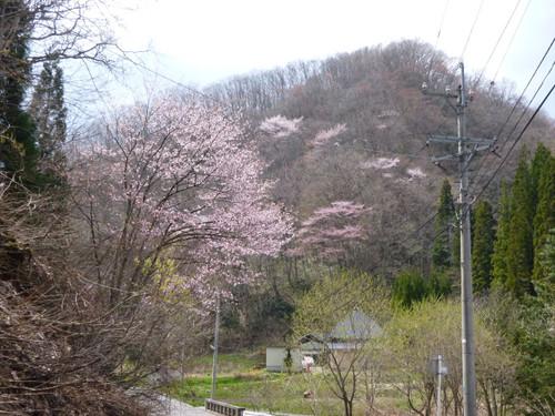 Hakuba09