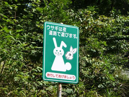 Shibu07_3