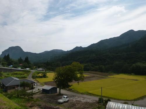 Shibu32