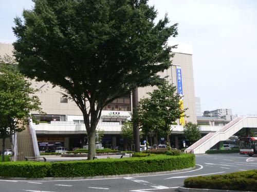 Shibu37