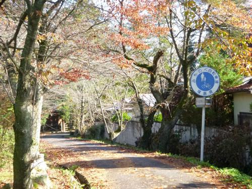 Natsuigawa016