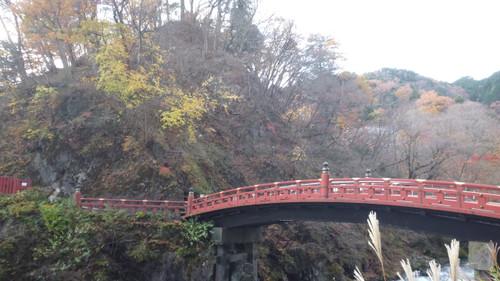 Nikkoi002_2