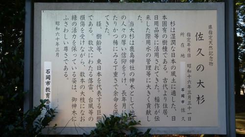 Yasatoi014