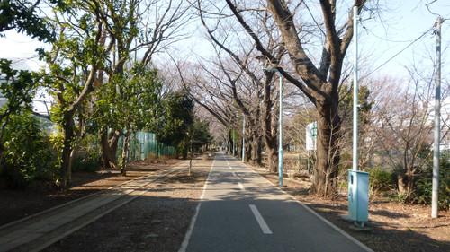 Kandagawa042