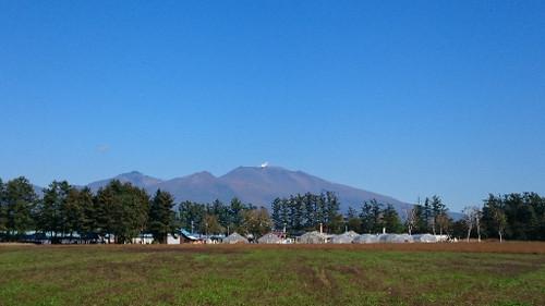 Taguchi002