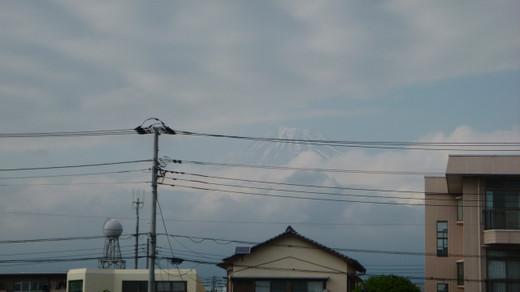 Fuji306